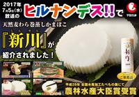 hirunandesu_shinsen.jpg